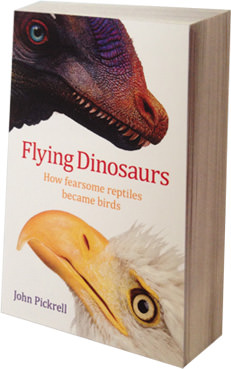 Palaeowins Mk. II Flying-dinosaurs-book