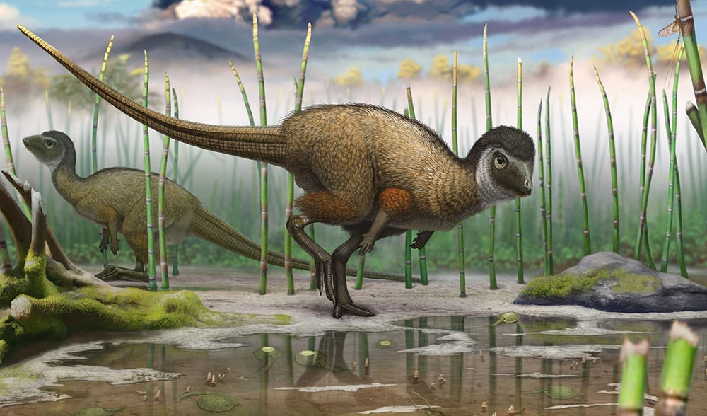 Reconstruction of Kulindadromeus , from the Jurassic of Siberia, in its natural environment. (Image: Andrey Atuchin)