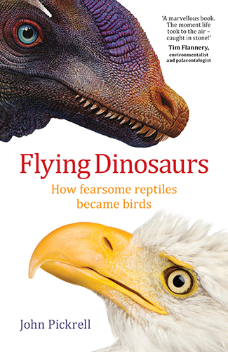 Flying Dinosaurs cover